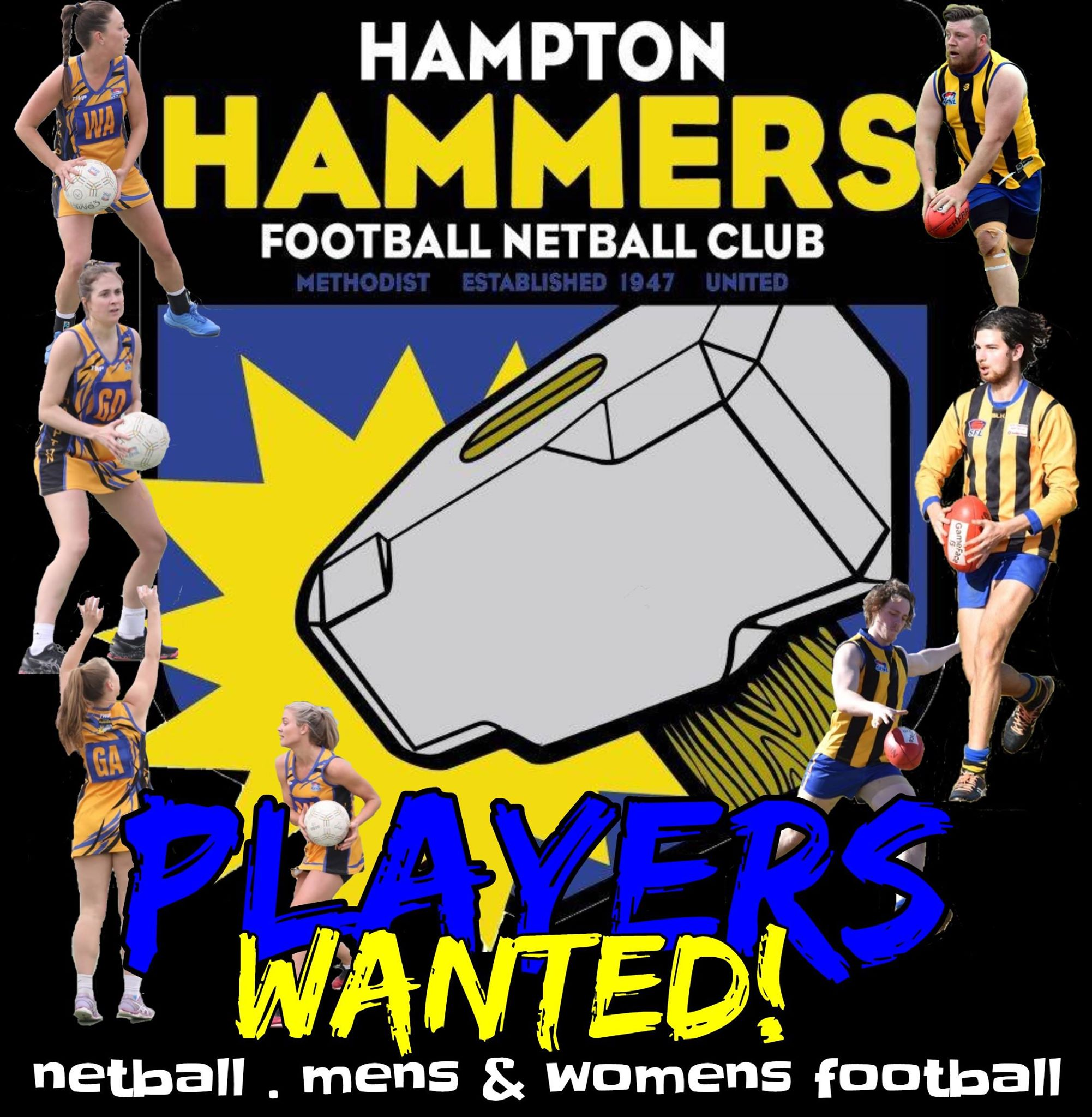Players Wanted - male and female footballer and netballers